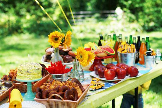 picnic taza