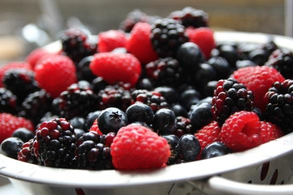 frutos rojos mermelada