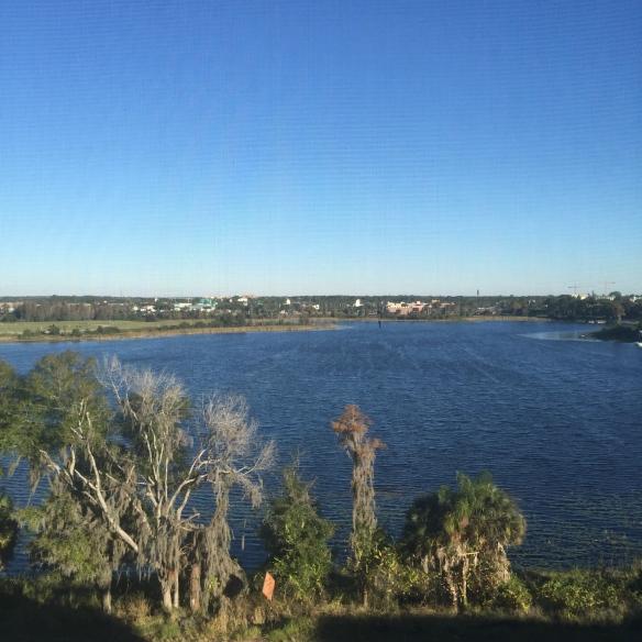 El lago en Orlando